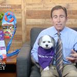 Dr. Jeff Werber – Pet Care