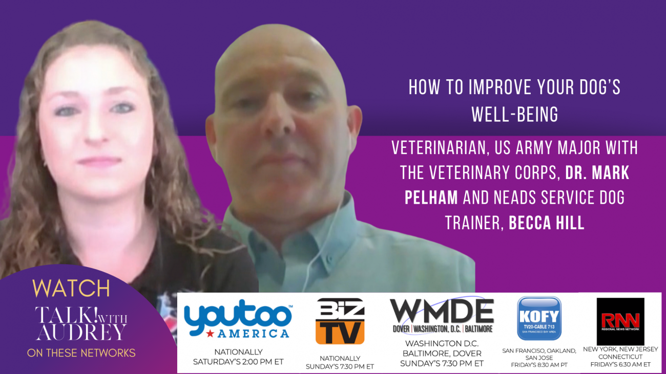 Dr Mark Pelham and Becca Hill- How to improve your dogs well bwing- TALK! with AUDREY TV