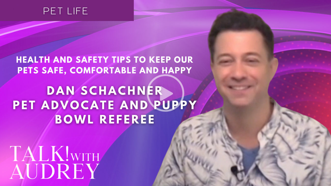 Dan Schachner, Pet Advocate and Puppy Bowl Referee - Health and Safety Tips to Keep Our Pets Safe, Comfortable and Happy